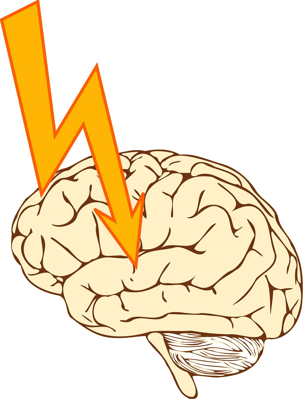 image: illustration of brain and arrow pointing to brain