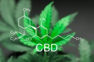 image of molecular structure of CBD oil over background of Cannibis