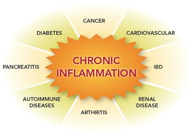 Image of Chronic inflammation mind map - including arthritus, pancreatitis, diabetes, cancer, IBD and Renal disease