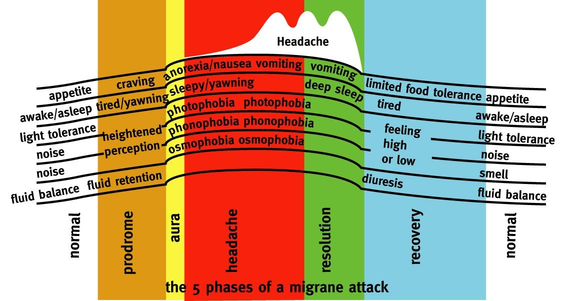 Image of the 5 phases of a migraine attack; Normal, prodrome, aura, headache, resolution, recovers and then normal