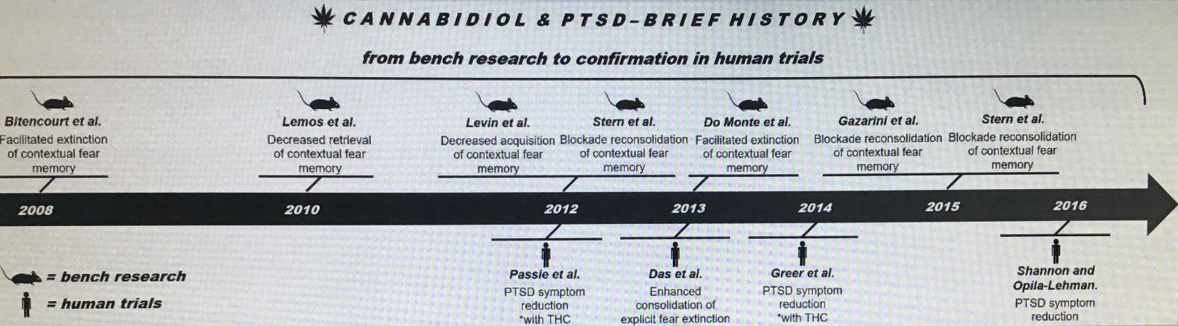 image of the history of cannabidiol and PTSD brief history