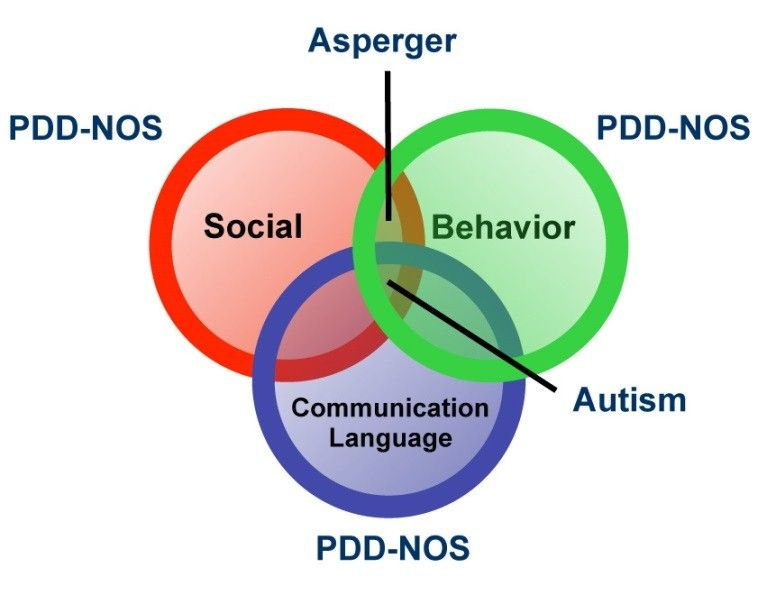 Image of a Venn diagram of the overlapping characteristics of Autism; Social, Communication / language and behavioural aspects.